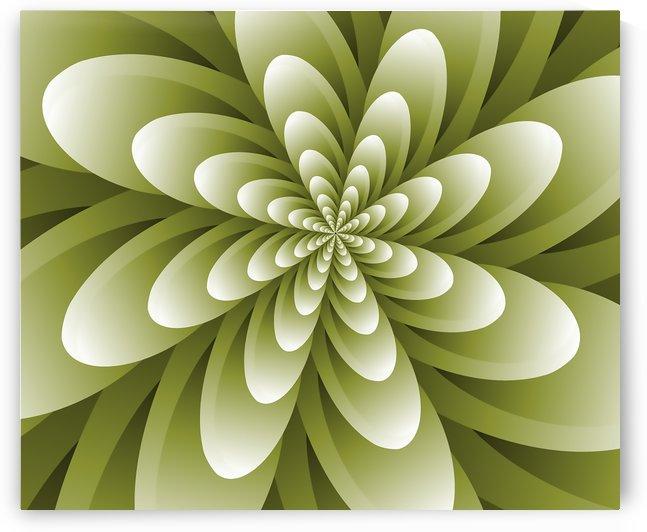 Greeny Feel by Rizwana Khan