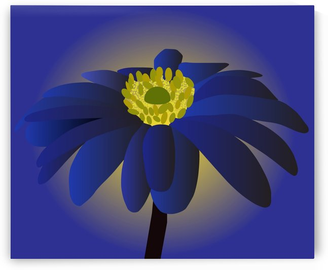 Anemone Blanda Flower Art by rizu_designs