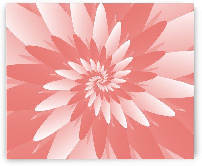 Spiral Flower Pattern Art by Rizwana Khan