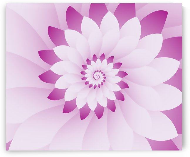 Abstract Pink & White Floral Design Art by rizu_designs