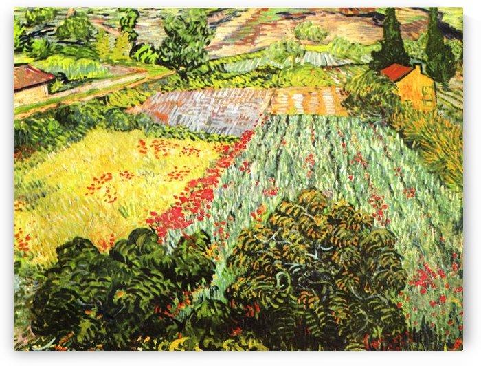 Blooming Field by Van Gogh by Van Gogh