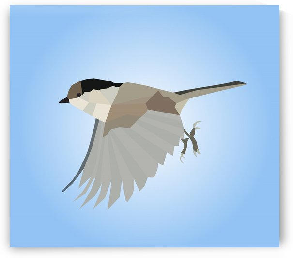 WILLOW TIT BIRD LOW POLY ART by rizu_designs