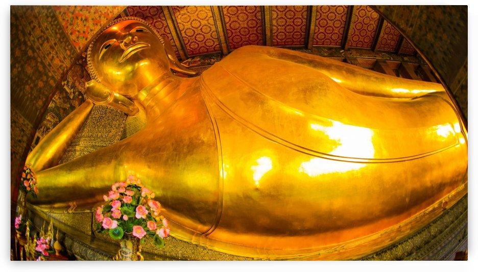 Why You Lying Buddha  by JOSEPH