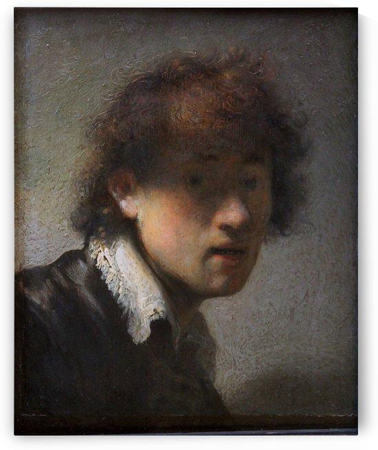 Harmensz. van Rijn by Rembrandt
