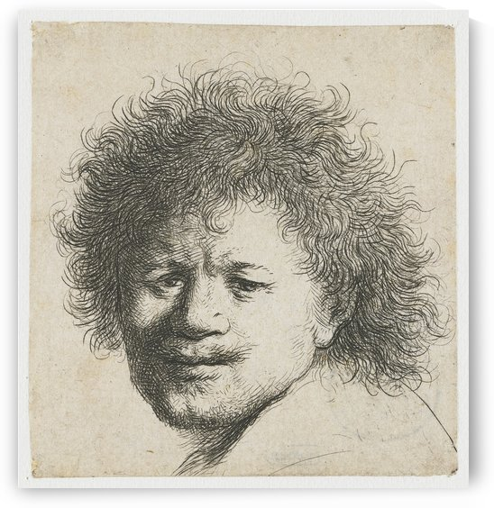Self-portrait with Long Bushy Hair by Rembrandt