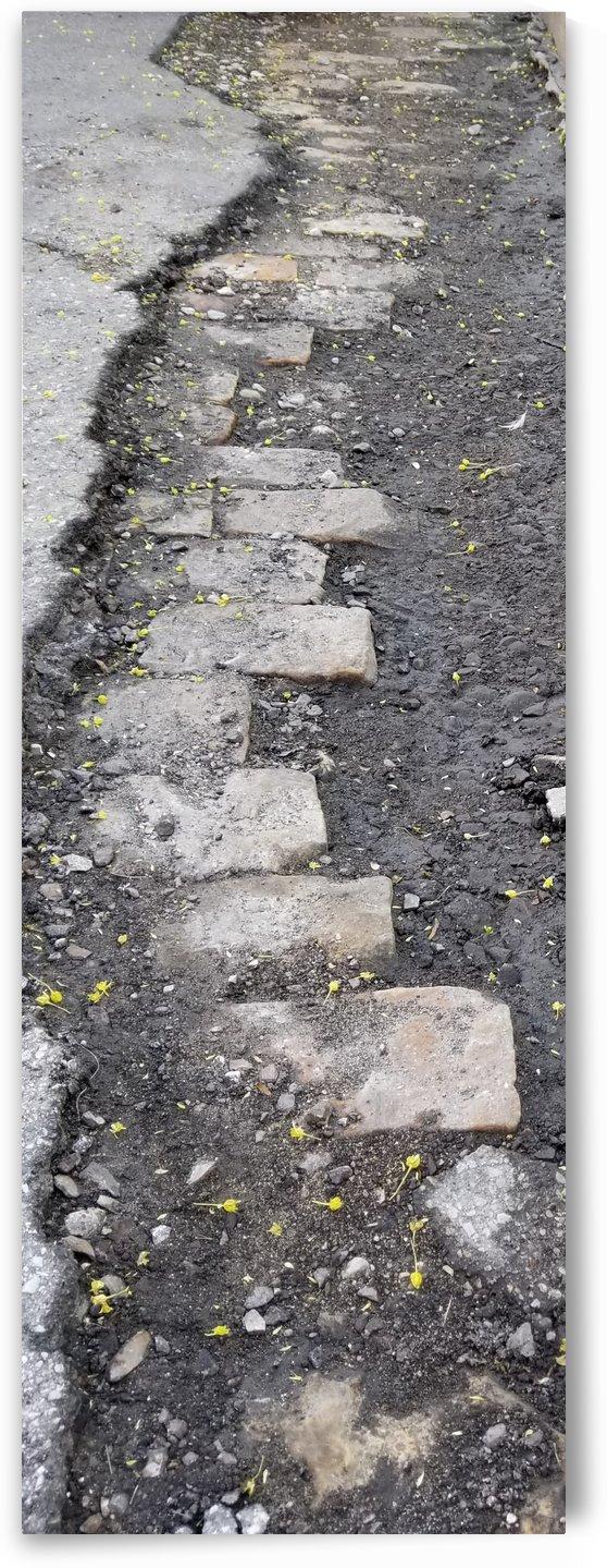 street bricks by Wendy A Rohn