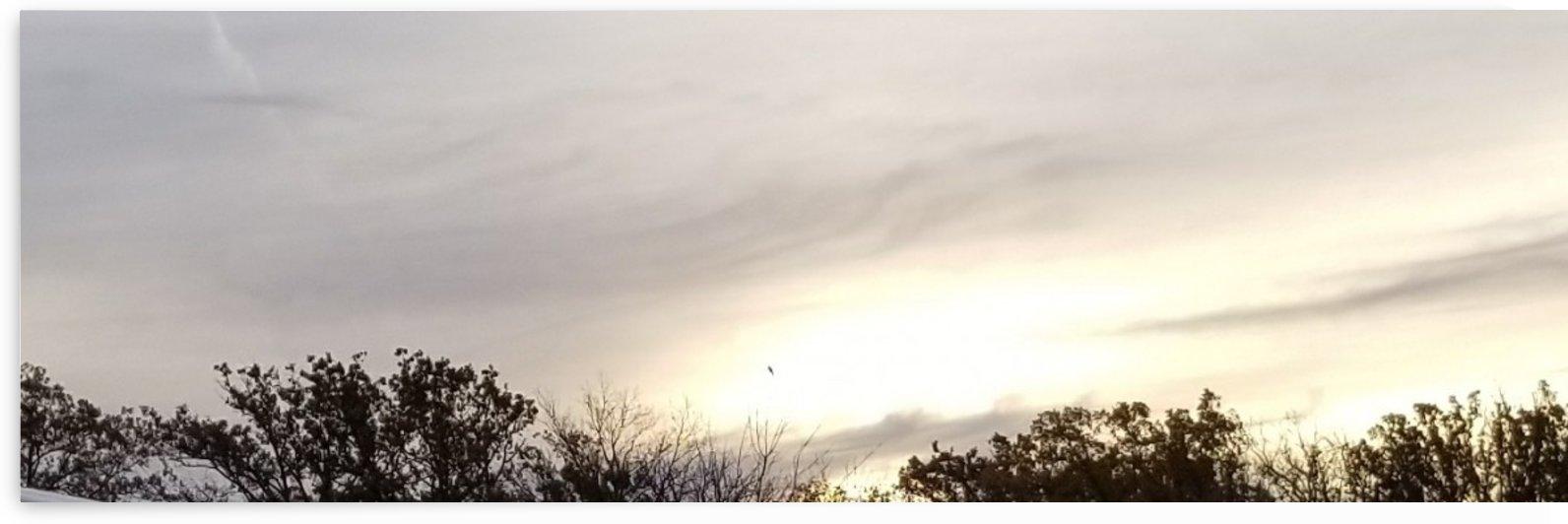 sunrise over work by Wendy A Rohn