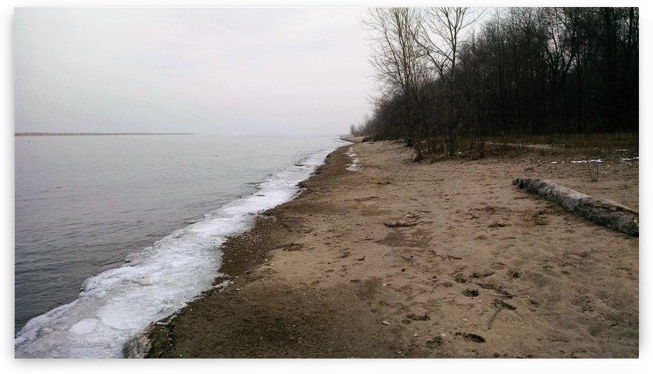 overcast beach by Wendy A Rohn