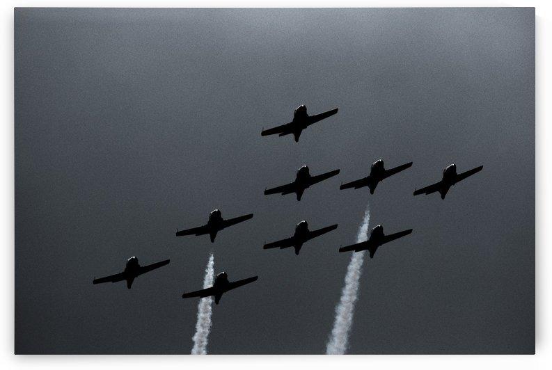 Snowbirds in formation by Koyy