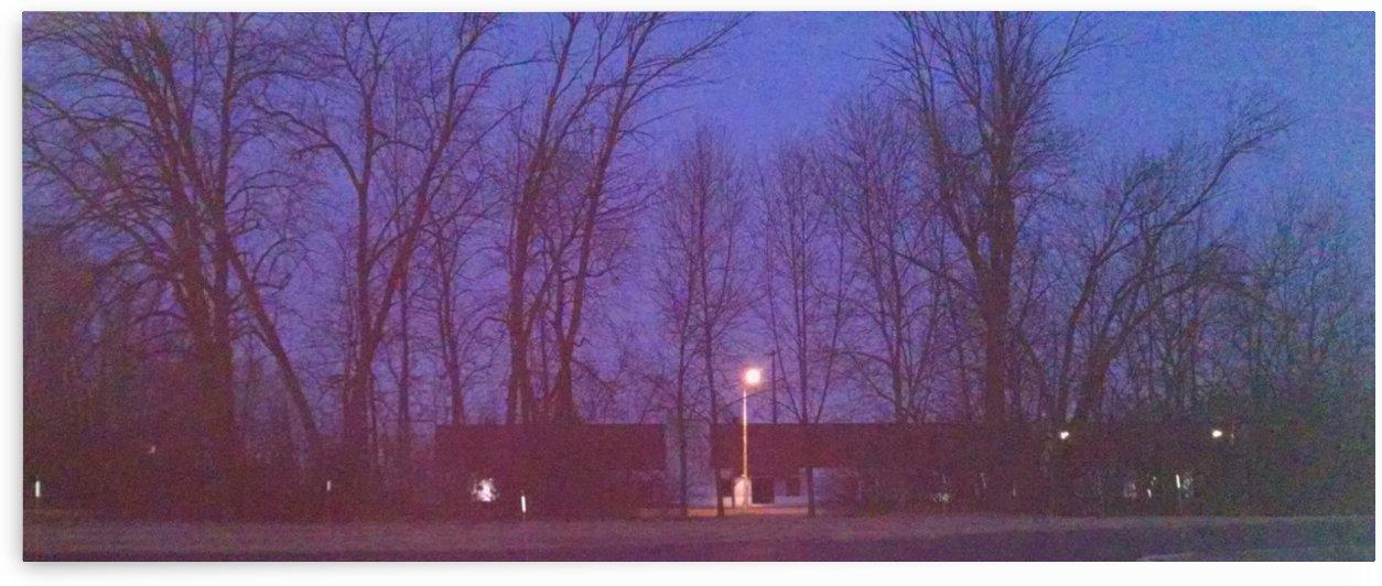 streetlamp at dawm by Wendy A Rohn
