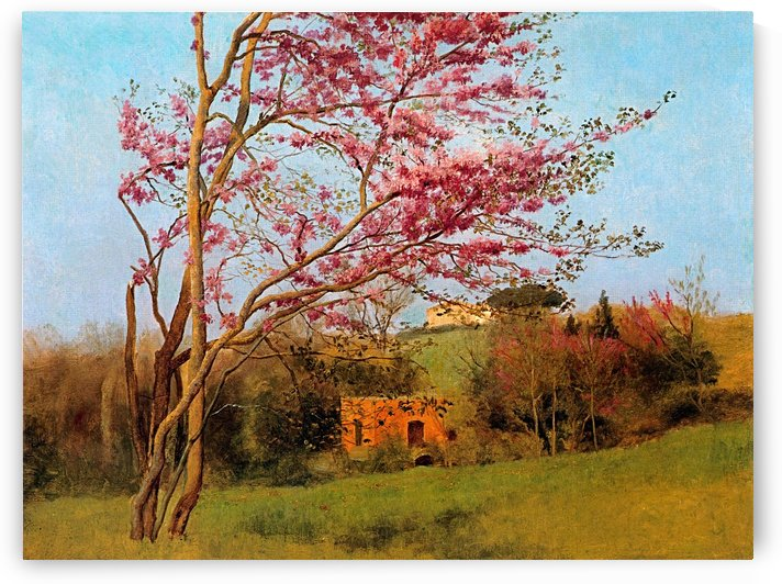 BLOSSOM TREE_OSG by One Simple Gallery