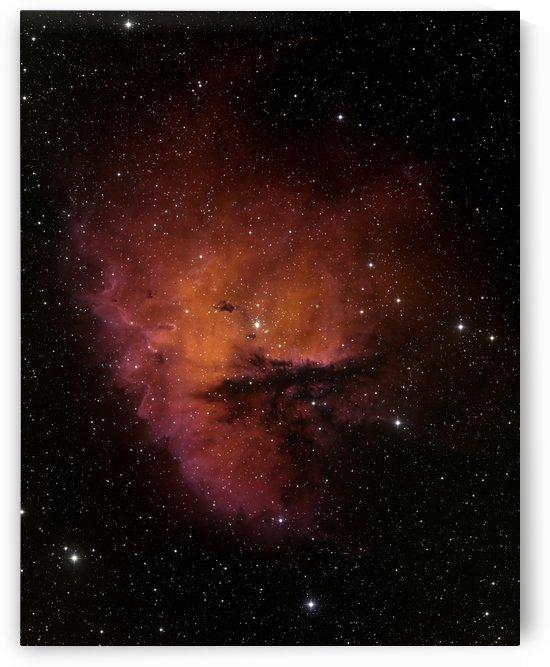 Bok Globules in NGC 281. by StocktrekImages