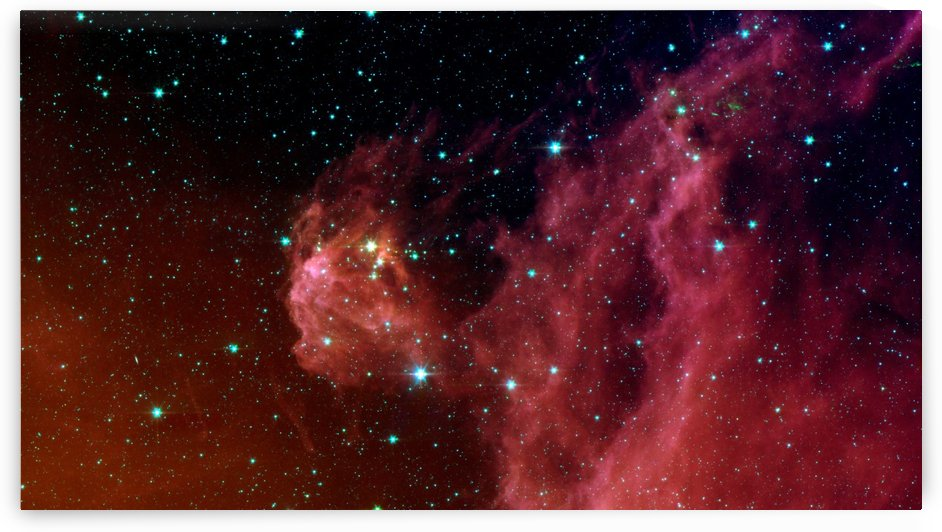 Young stars emerge from Orions head. by StocktrekImages
