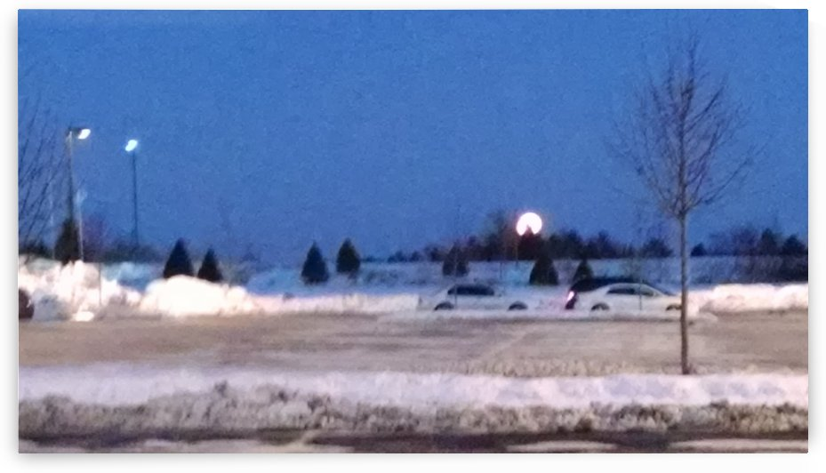 moonrise in suburbia by Wendy A Rohn