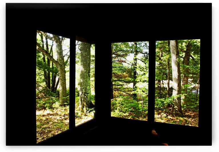 Nature Framed by Deb Oppermann