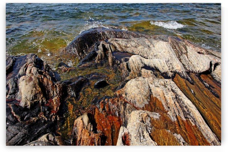 Wreck Island Shore V by Deb Oppermann
