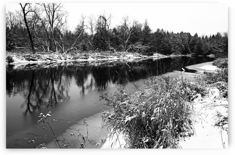 Touch Of Winter Black And White by Deb Oppermann