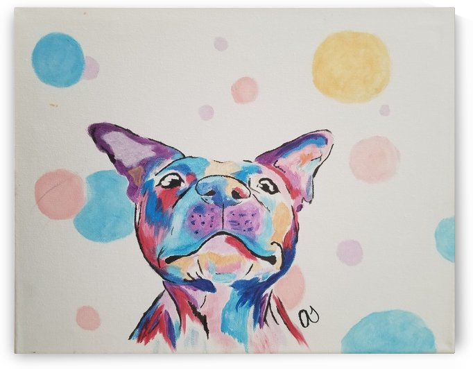 Multi color Dog 2 by Aaliyah