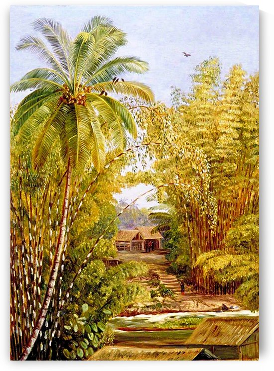 Bamboos And Coconut Palm_0SG by One Simple Gallery