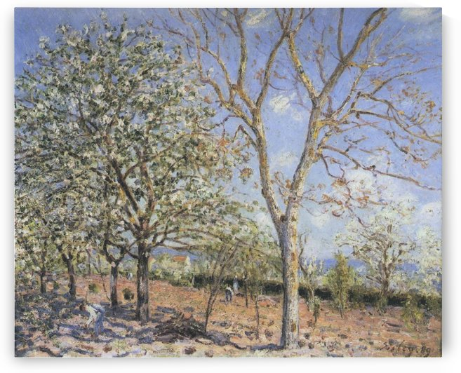 Landscape with Blooming Trees by Alfred Sisley