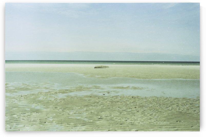 Mayflower Beach 1 by Jacob Roy