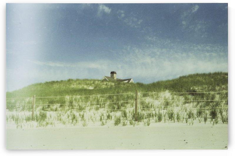 Dunes by Jacob Roy