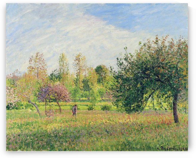 Meadow at Eragny, Summer, Sun, Late Afternoon by Camille Pissarro