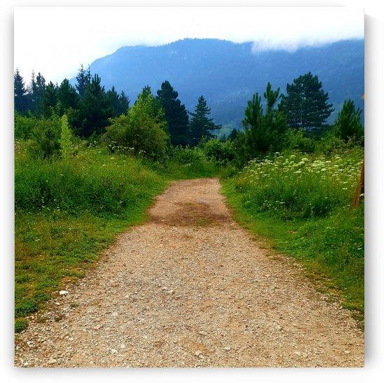 road 1 by kitso