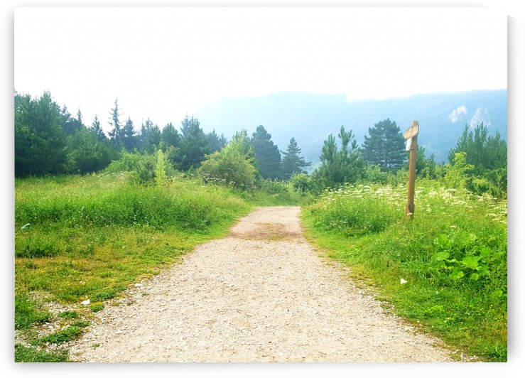 dream road by kitso