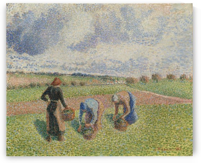 Peasants Gathering Herbs, Eragny by Camille Pissarro