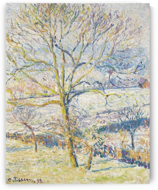 Big Nut-Tree, the Frost at Eragny by Camille Pissarro