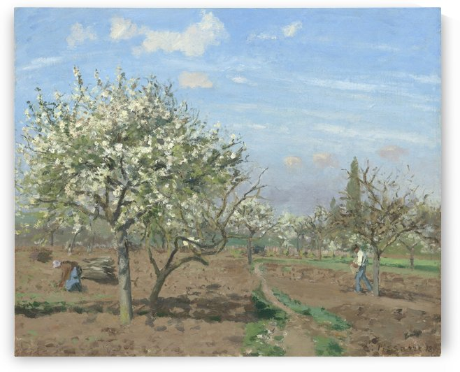 The Garden of Maubuisson, Pontoise. Pear Trees in Bloom by Camille Pissarro