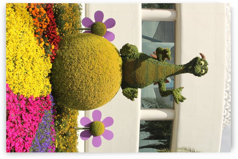 IMG_3605 by Lalitha Murali