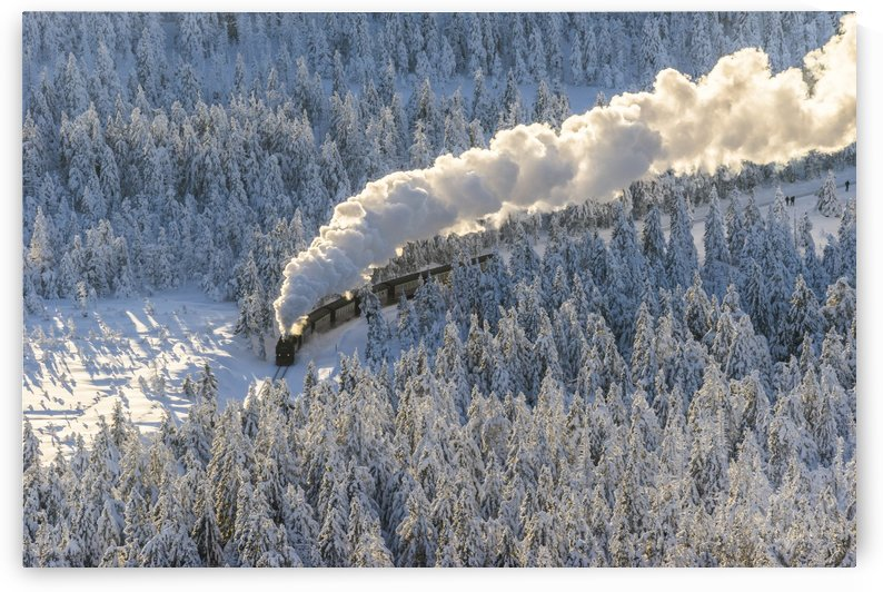Harz Narrow Gauge Railway in Winter by Patrice von Collani