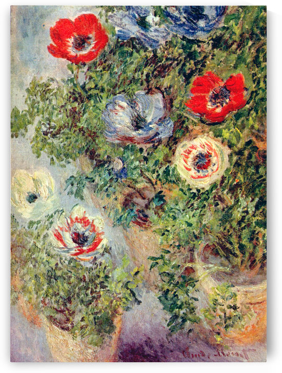 Anemonies by Claude Monet