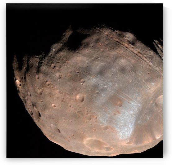 Mars moon Phobos. by StocktrekImages