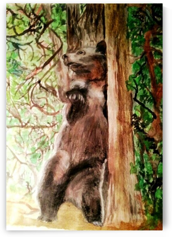 The Bear Facts by Jennifer Lawson