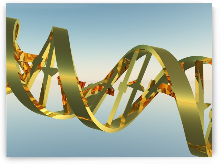 DNA Strand by Bruce Rolff