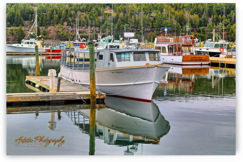 North East Harbor - APC-308 by Artistic Photography