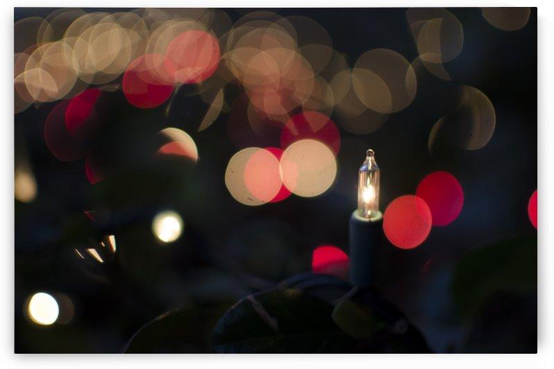 Twinkle by Vlad Kochanzhi