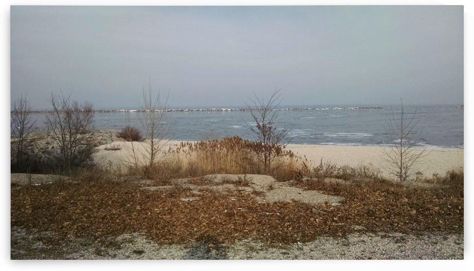 snowy lake by Wendy A Rohn