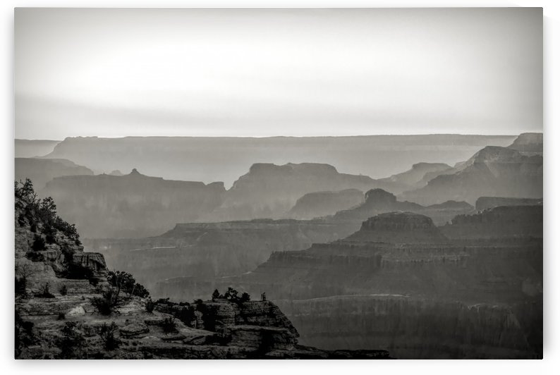 Misty Grand Canyon  by Chuck Kuhn