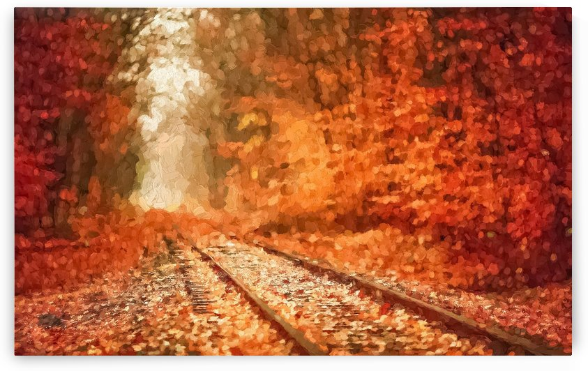 Forest Railroad by A WYN CHANCE