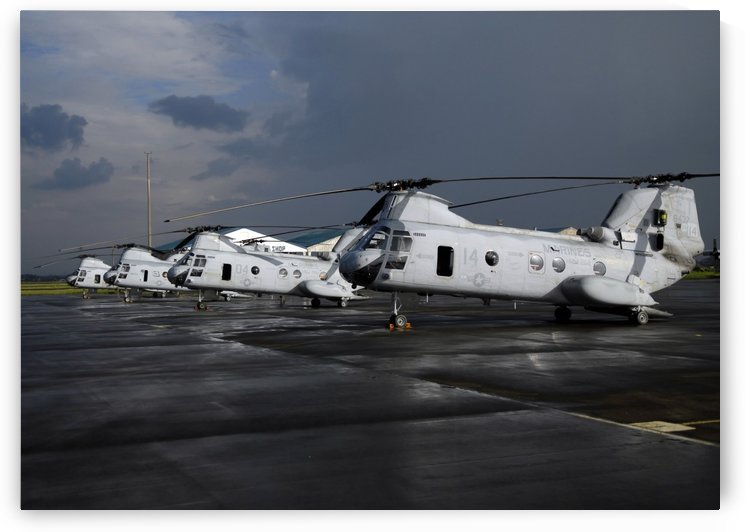 A row of CH-46 Sea Knights sit on the flight line. by StocktrekImages