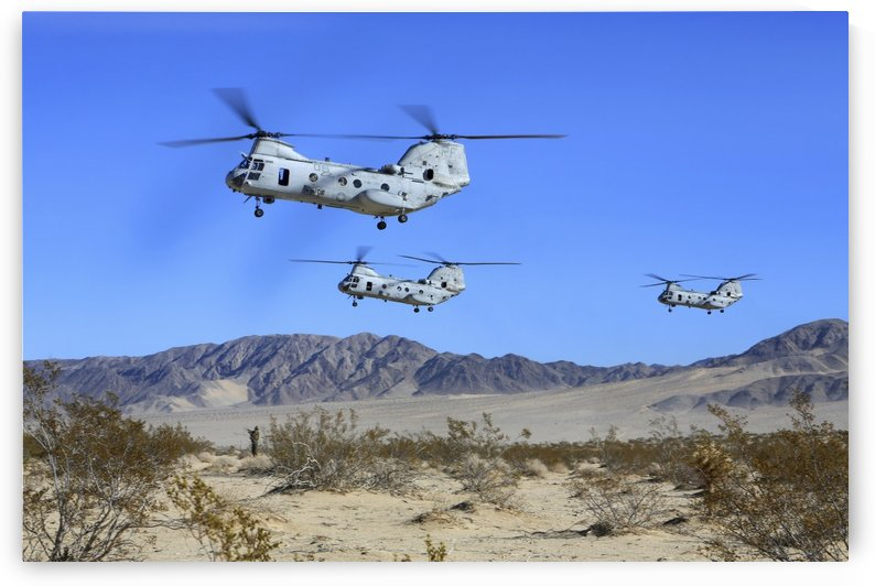 CH-46E Sea Knight transport helicopters fly over Camp Wilson. by StocktrekImages