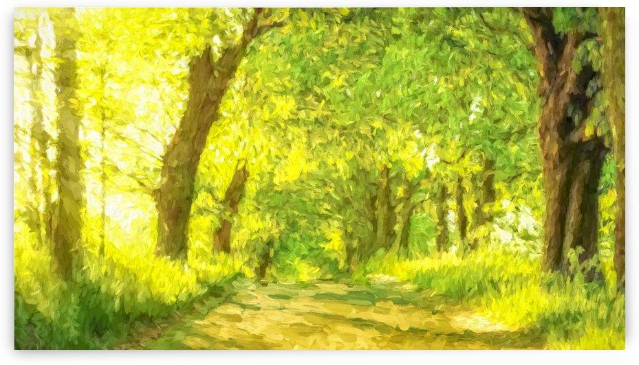 Walk in the Woods by AMANDA WYN CHANCE