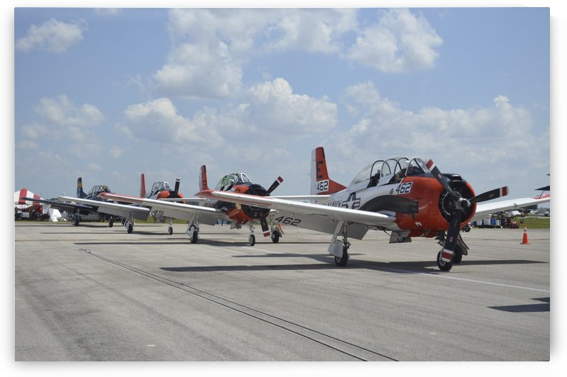 T-28C Trojan aircraft lined up on the flight line. by StocktrekImages