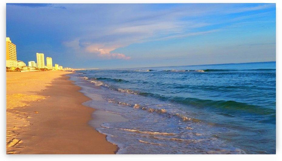 Florida  by BethM