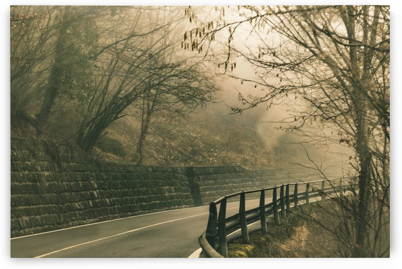 Foggy Tuscany Empty Highway by Daniel Ferreia Leites Ciccarino