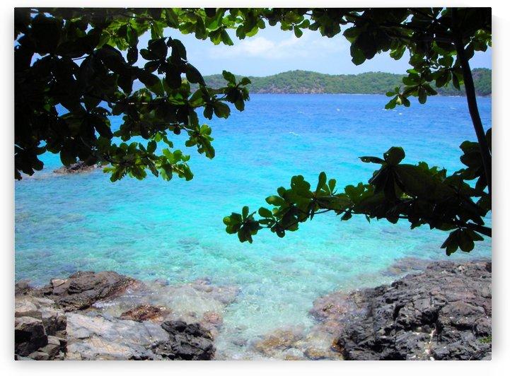 Tropical Waters 2 by Jodi Webber
